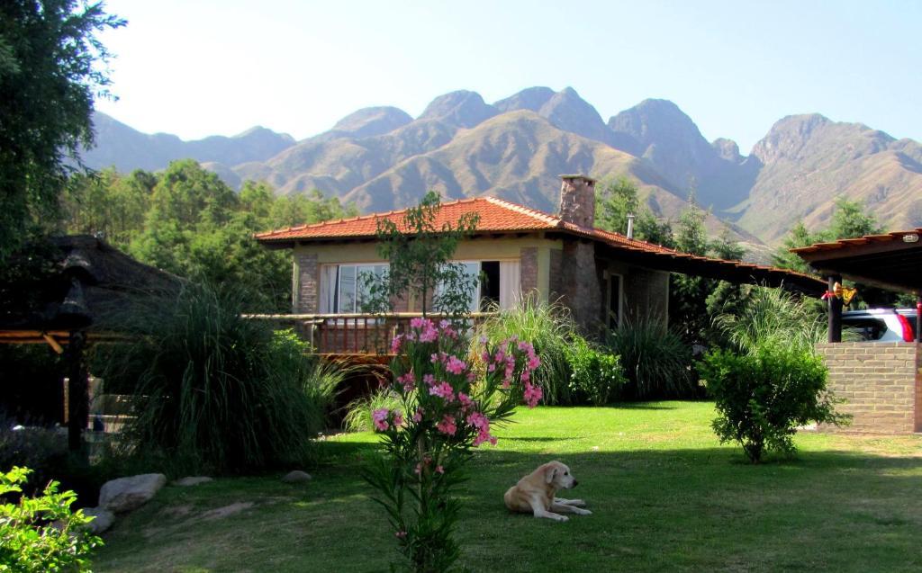 Caba as terrazas de cacheuta argentina cacheuta for Terrazas 5 bariloche