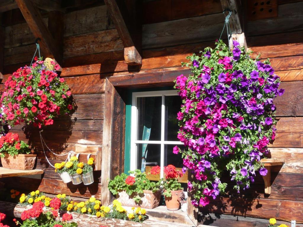 Ferienhaus meizeit h ttendorf turracher for Turracher hohe skigebiet