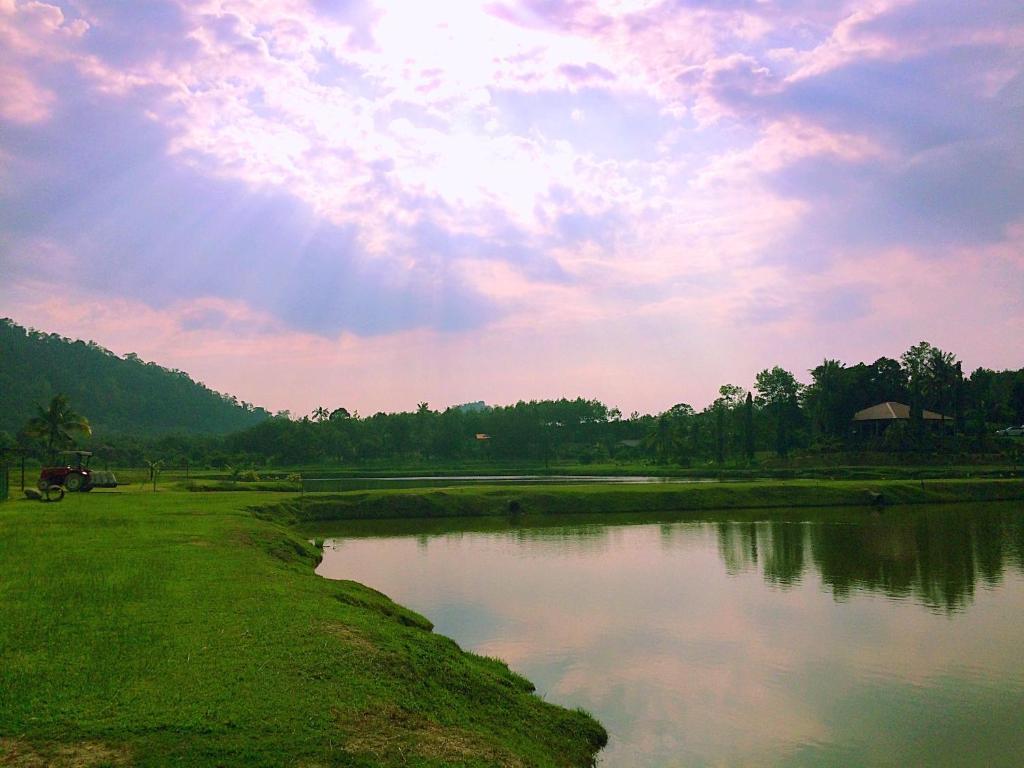 Kampung Bongsu Farm Stay