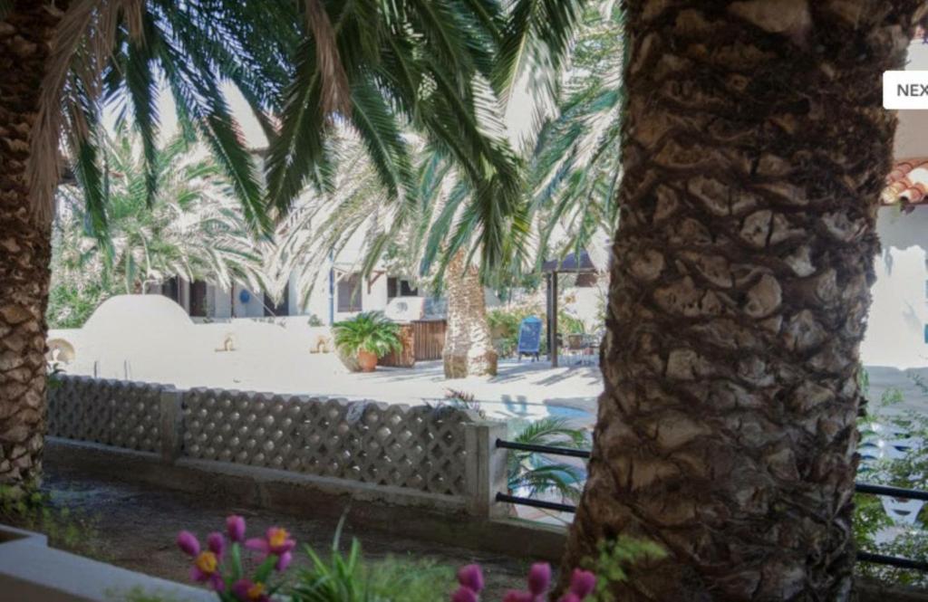 Ioannis Apartment