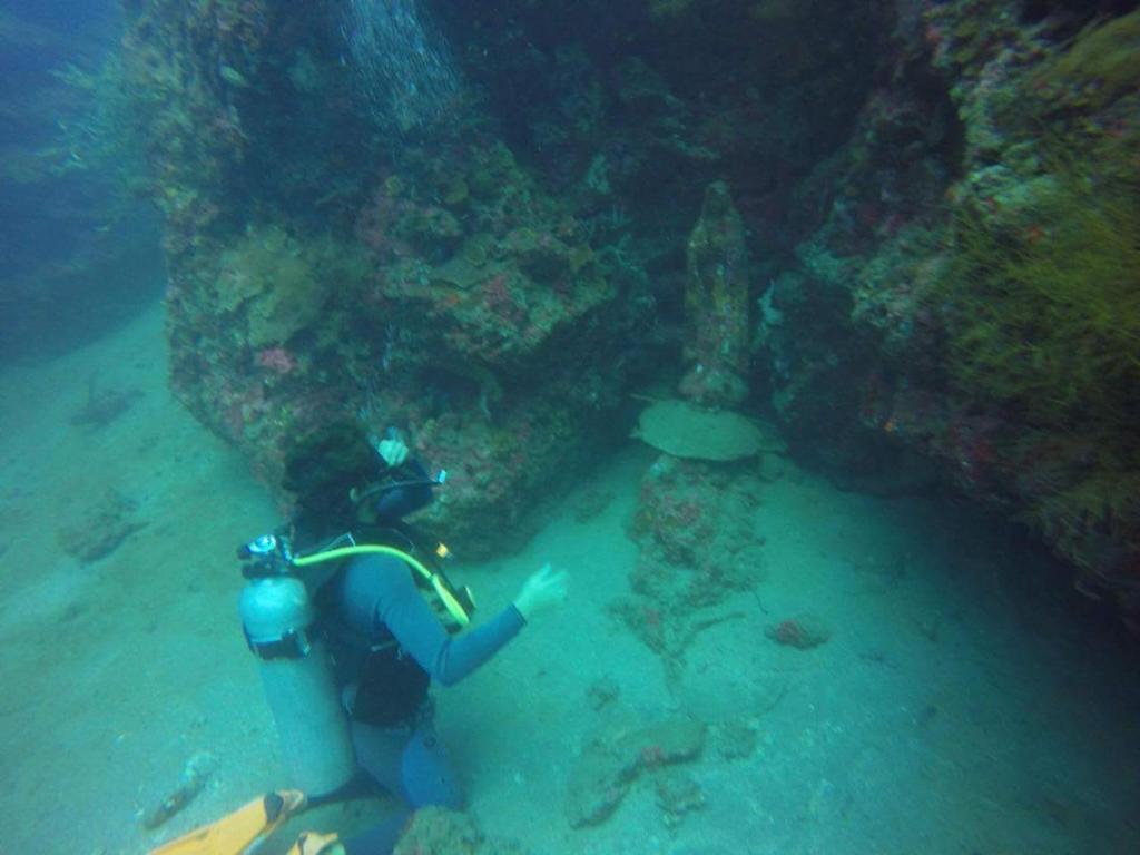 Anilao Scuba Dive Center (ASDC)