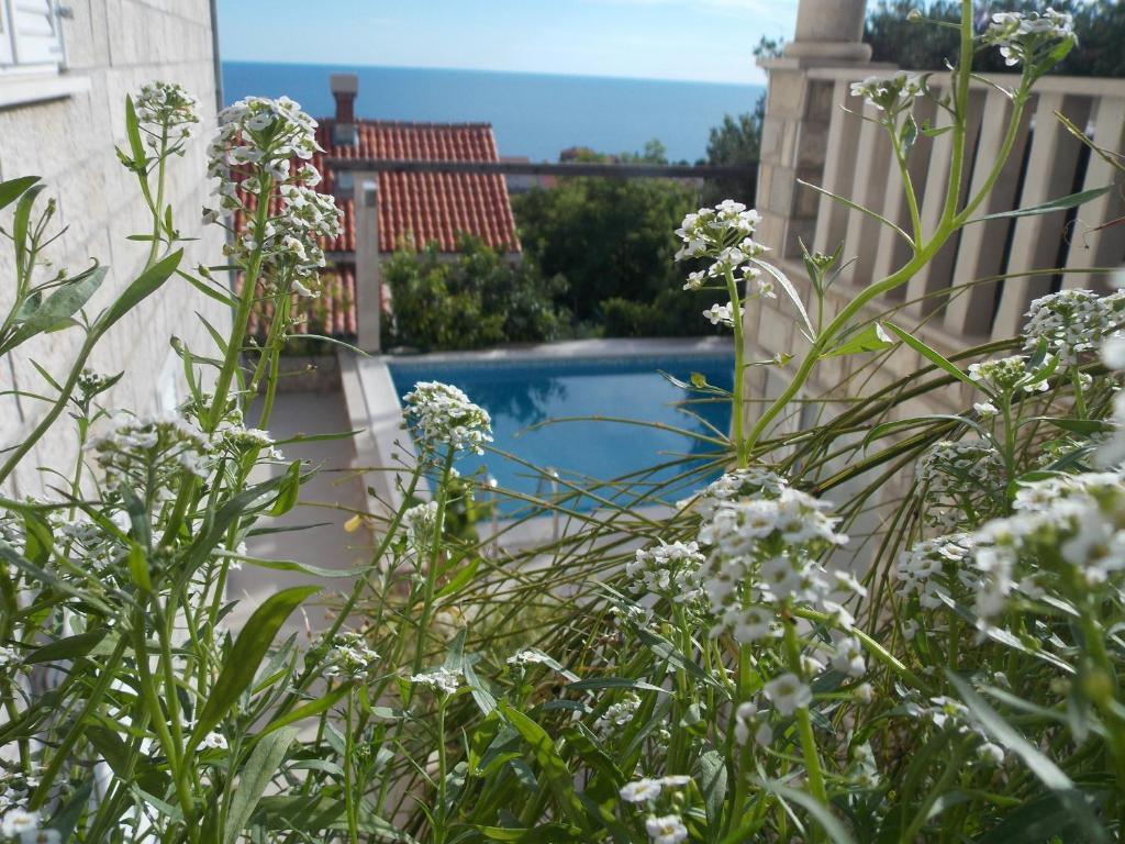 89334074 - Guesthouse Villa Klaic