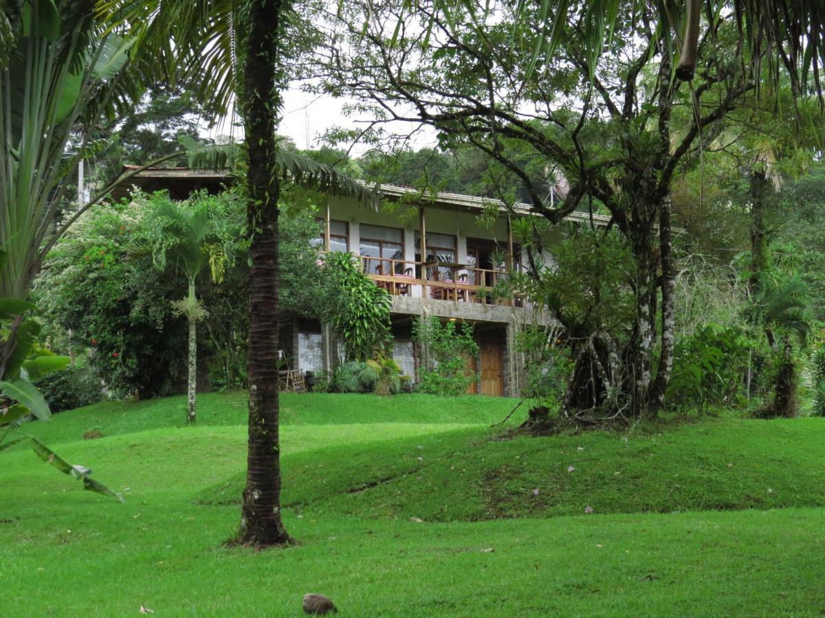 Hotel La Rana de Arenal