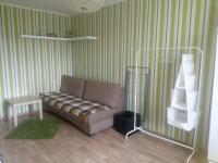 Mini apartment Raspletina