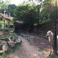Ferienwohnung am Aschbacherhof