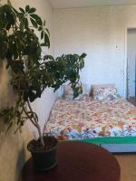 Apartments on Mira 28