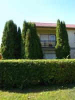 4-Bedroom Holiday home in Balatonboglár/Balaton 18196
