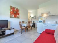 Apartment Kapovica VI