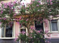 Apartment Maisi