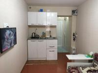 Studio Apartment on Mirieli Sieidov