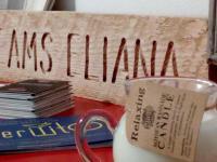 Sweet rooms Eliana