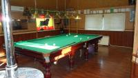 House in Saint Petersburg with billiard