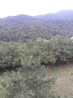 Dilijan Haxarcin