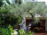 Pura Vida Eco House