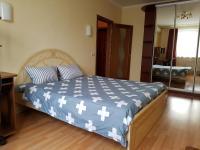 Deluxe Apartment on Bratislavskaya