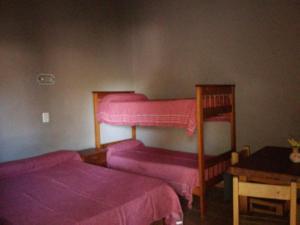 Una cama o camas cuchetas en una habitación  de La Dolfita