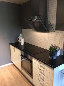 Una cocina o kitchenette en Apt. Grünerløkka SBG13