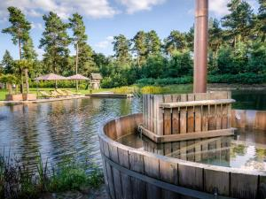 בריכת השחייה שנמצאת ב-Landgoed Sollewerf או באזור
