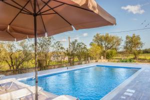 בריכת השחייה שנמצאת ב-Villa Zerbera או באזור