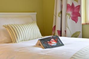 מיטה או מיטות בחדר ב-Rookyards