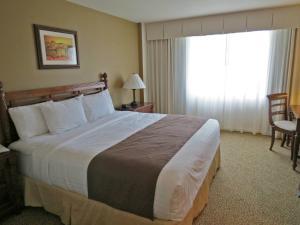Mayagüez Resort and Casino - Image3