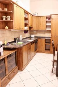 A cozinha ou cozinha compacta de Big Apartment by Wenceslav Square