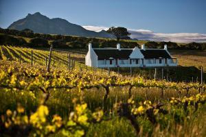 Aaldering Vineyards, Winefarm & Luxury Lodges, Stellenbosch Hotels, South Africa