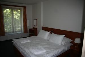 Lazensky Hotel Park - Image3