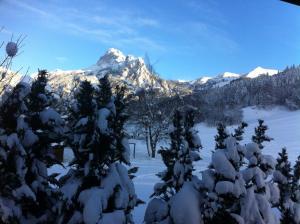 L'Appart D'Alice בחורף
