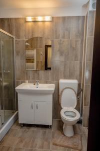 Hotel Ciobanasu - Image4