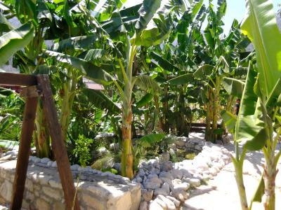 Booking.com: stone village hotel   bali, grecia
