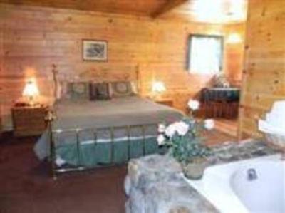 Lodge big bear manor spa cabins big bear lake ca for Big bear cabins with jacuzzi tubs