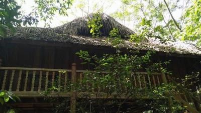 Quyets Jungle House