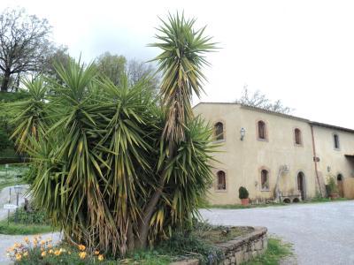 Agriturismo Il Daino - San Piero Patti - Foto 11