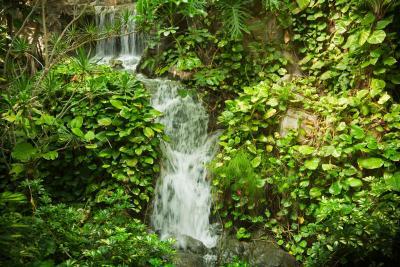 Hotel jardines de nivaria adeje spain for Adrian jardines de nivaria