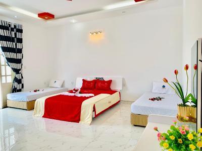 Tran Duy City Villa 1