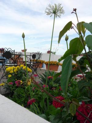 Hotel Punta Barone - Santa Marina Salina - Foto 15