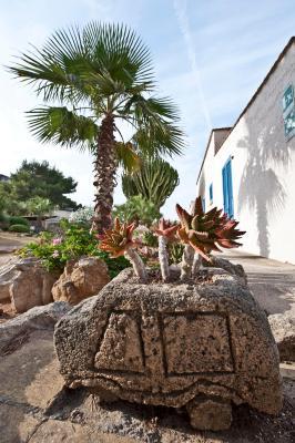 Miramare Residence - Favignana - Foto 19
