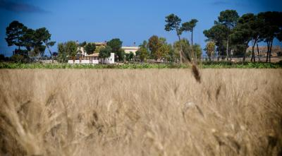 Residence Casale Verderame - Trapani - Foto 22