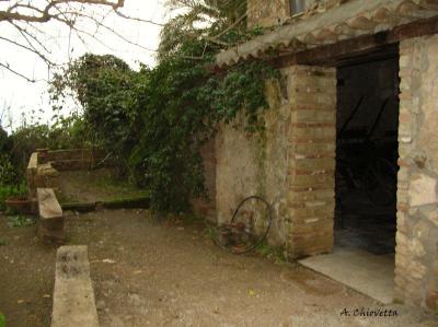 Agriturismo Villa Nicetta - Acquedolci - Foto 18