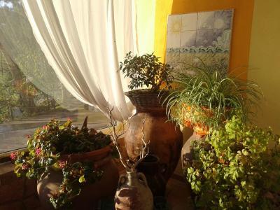 Ciuci's Manor - Aragona - Foto 10
