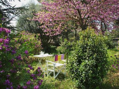 B&B La Rosa dei Venti - Caltagirone - Foto 9
