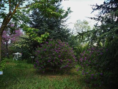 B&B La Rosa dei Venti - Caltagirone - Foto 6