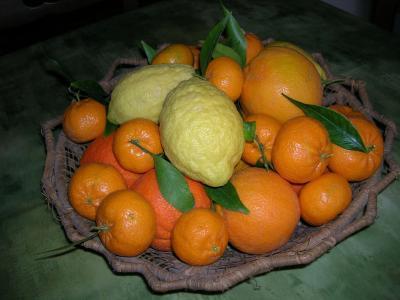 Agriturismo Baglio Donna Santa - Dattilo - Foto 3