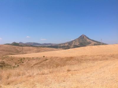 Masseria Floresta - San Cono - Foto 33