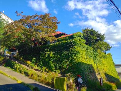 photo.1 ofおたるない バックパッカーズホステル 杜の樹