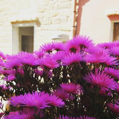 B&B Cinisi Vacanze - Cinisi - Foto 20