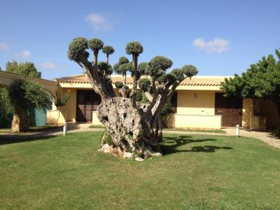 Disìo Resort - Marsala - Foto 14