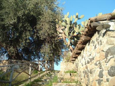 Antico Borgo Agriturismo - Calatabiano - Foto 17