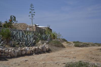 Cala Madonna Club Resort - Lampedusa - Foto 38